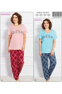 Комплект штанов и футболки Vienetta Secret Арт: 705084-5843
